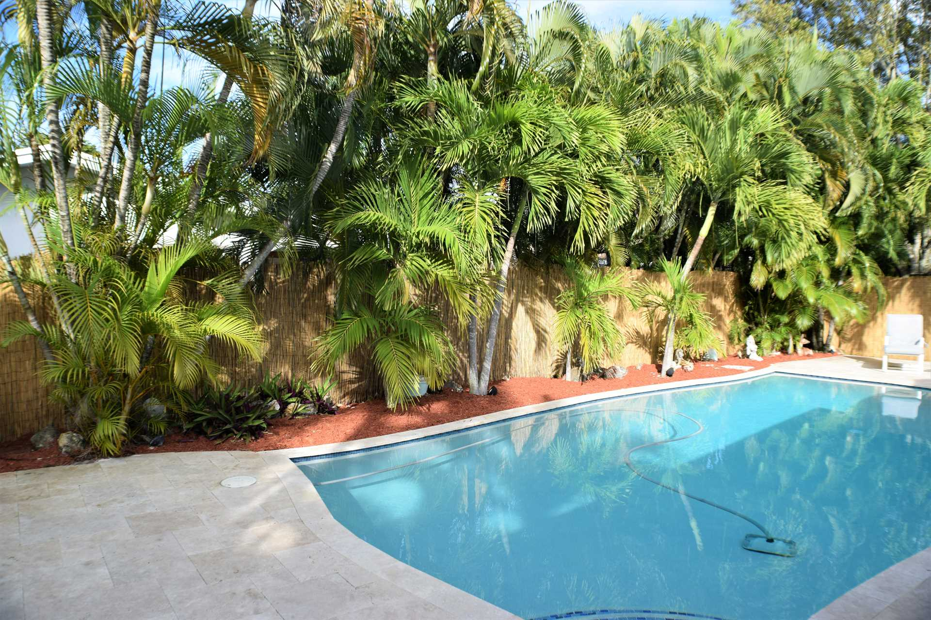 Pool deck is surrounded by six foot privacy fence and lush f
