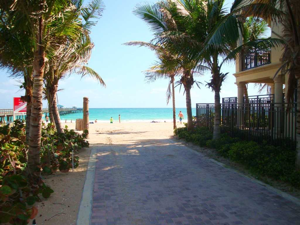 One of the many beach entrances is shaded by swaying palms.