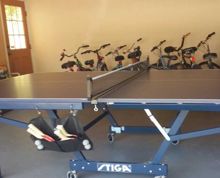 Ping pong table (folding) and 10 bikes in garage