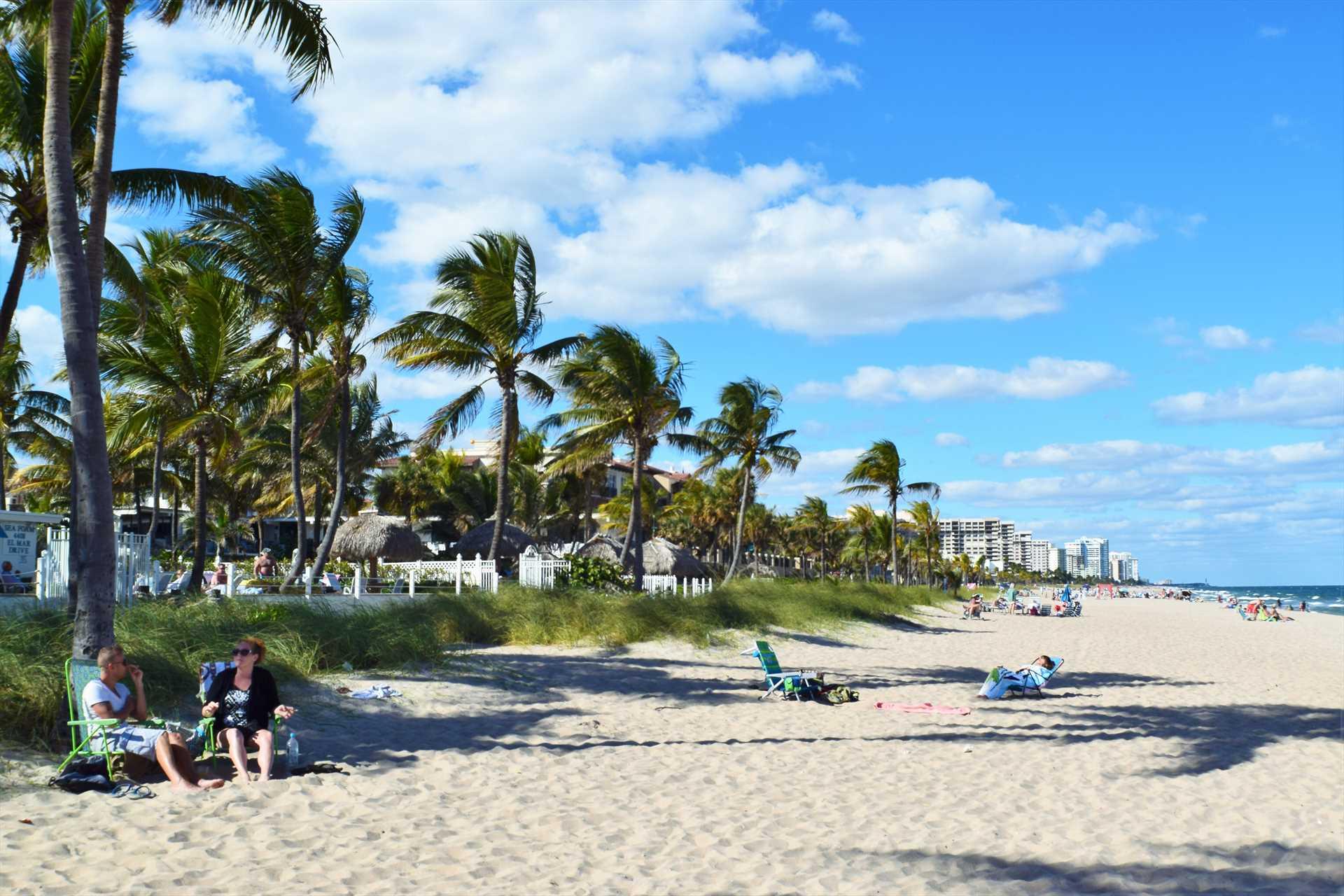 Swaying palms along the beach beckon.