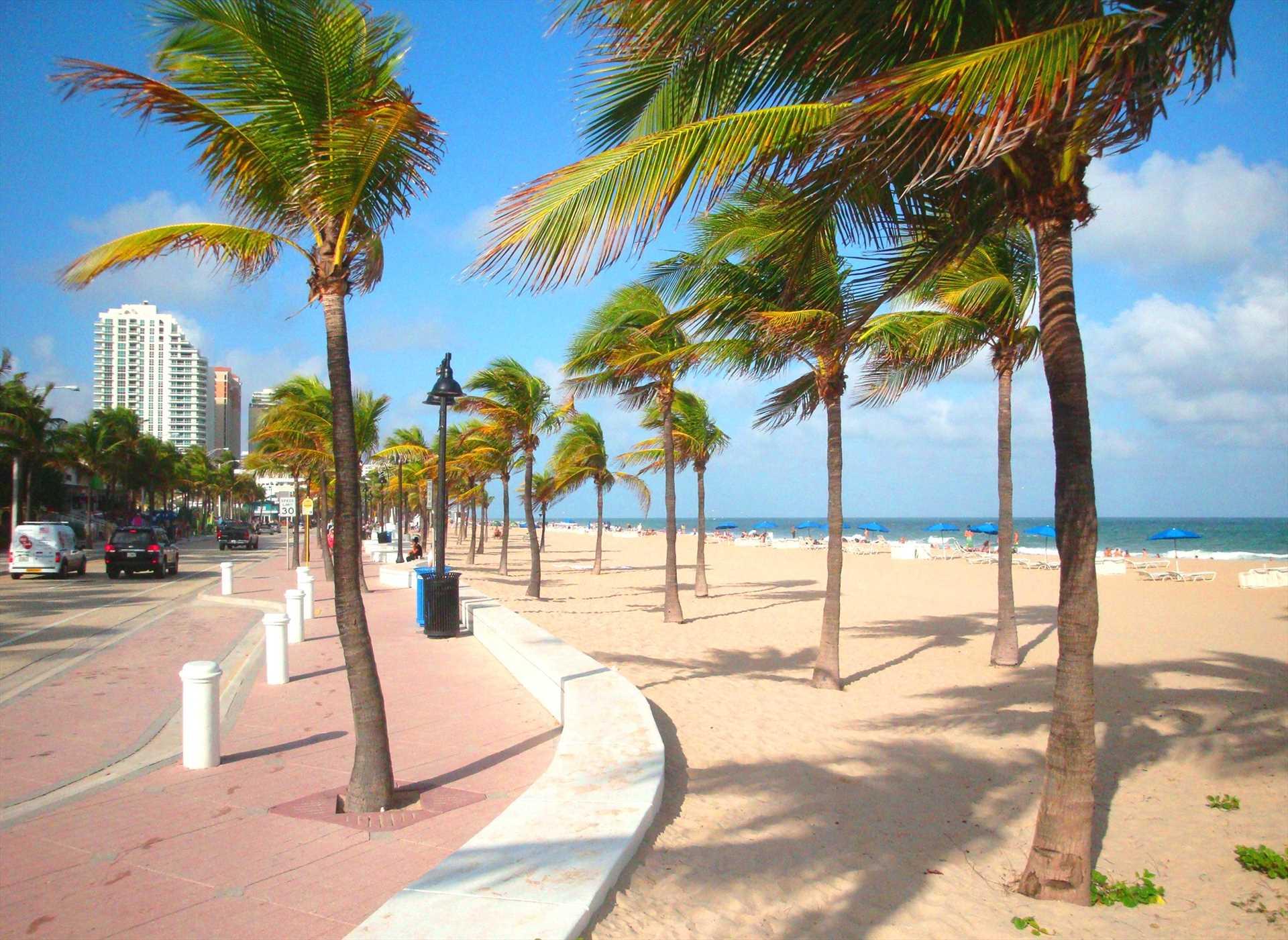 Newly landscaped Lauderdale beach is beautiful.