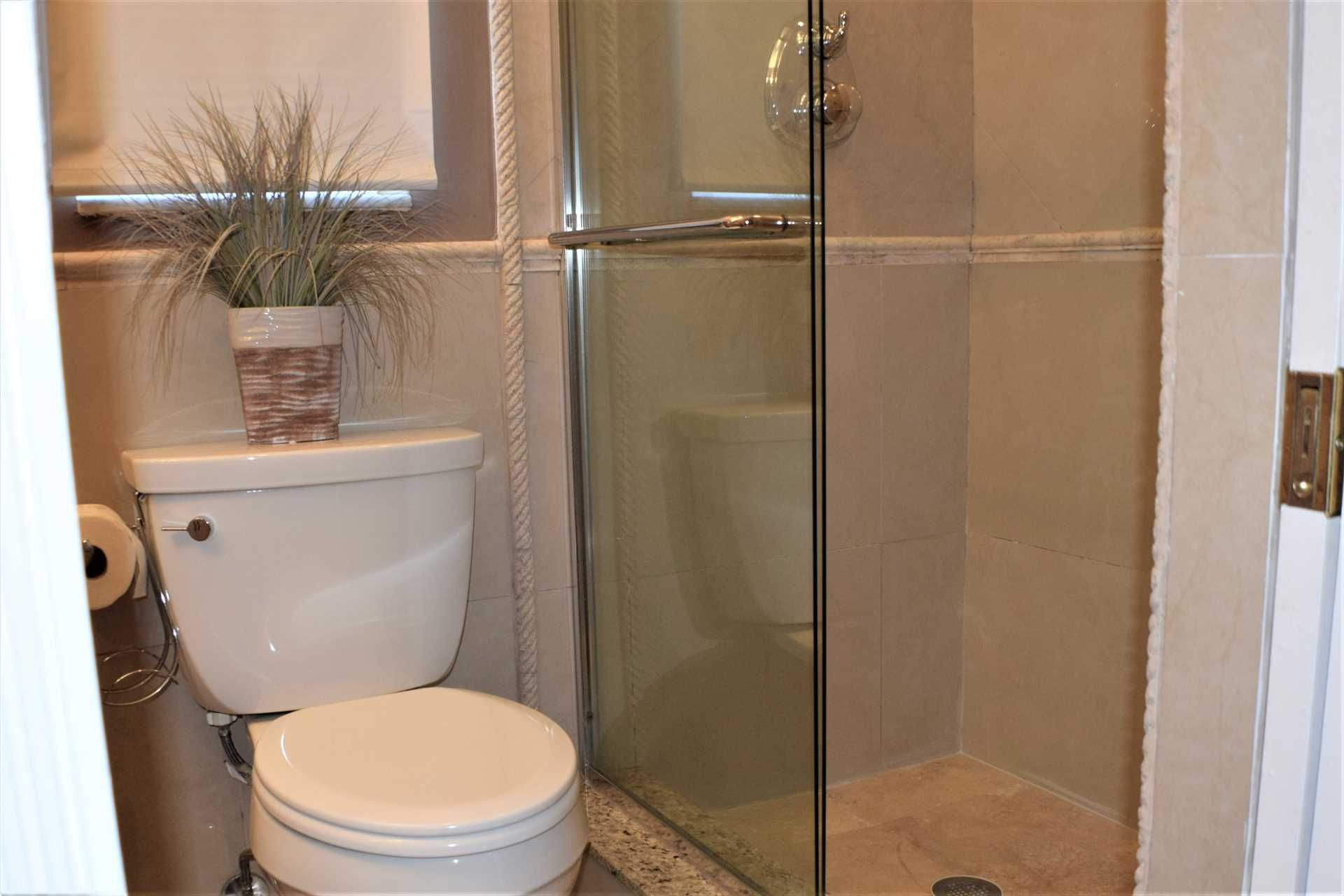 Master bath also has walk in shower with side jets.