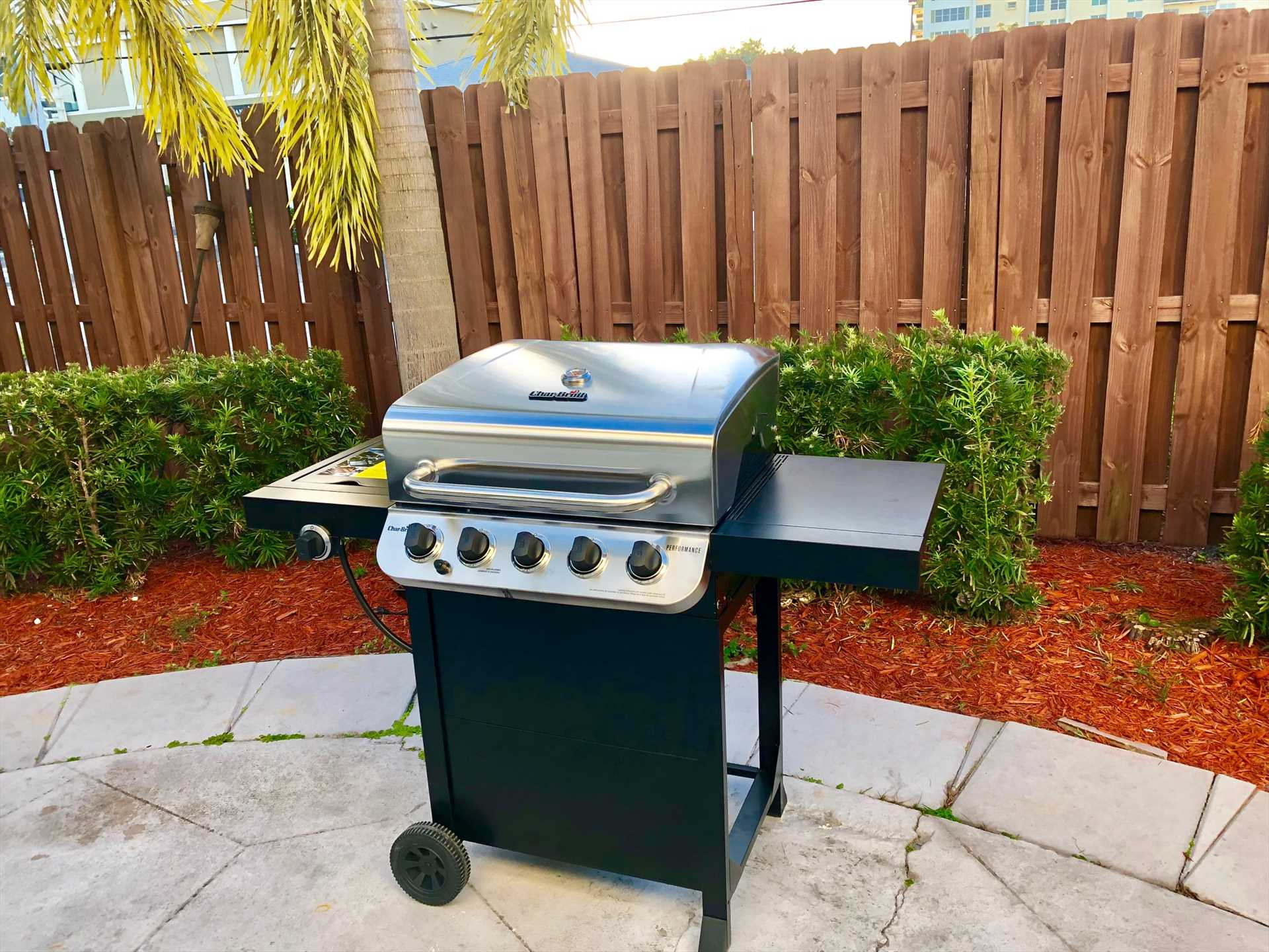 Or throw some shrimp skewers or a few steaks on the new gas
