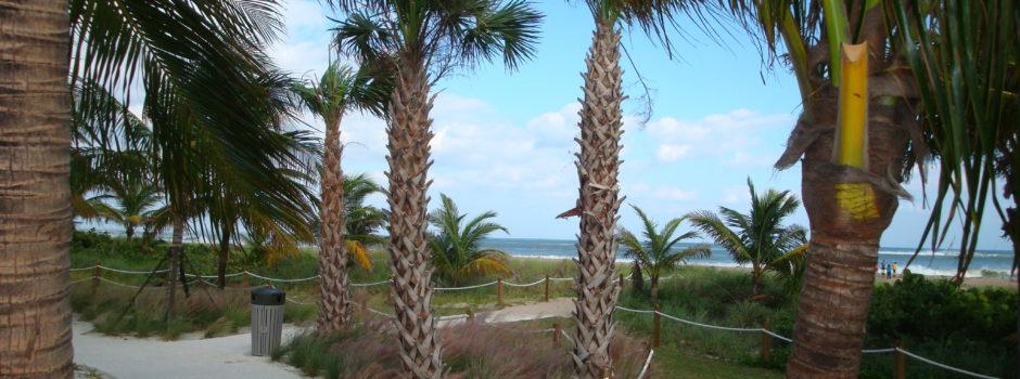Pomapno Beach 102612 012